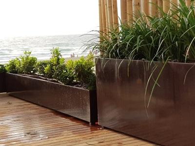 עיצוב הקמת גינות \ דשא סינטטי